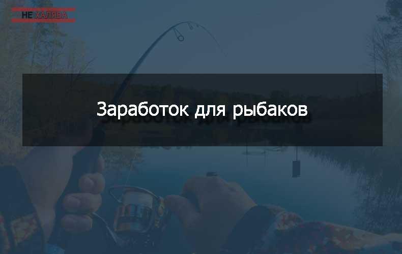 zarabotok-dlya-rybakov-v-internete